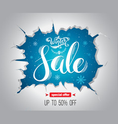 Winter sale background for promotion vector