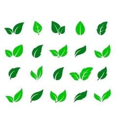 Green leaf icons set vector