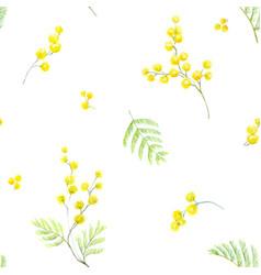 watercolor mimosa pattern vector image vector image