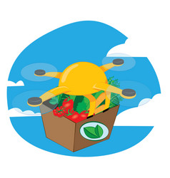 shipping drone delivering fresh food vector image