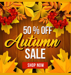 Autumn sale poster fall season discount price vector