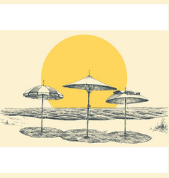 beach and sea panorama umbrellas on beach by vector image