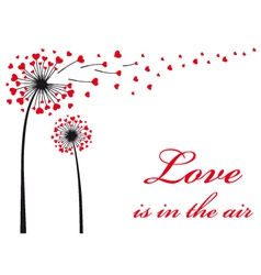 dandelion with red hearts vector image