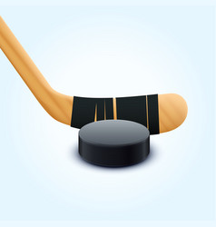 puck and stick vector image