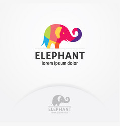 colorful elephant logo vector image