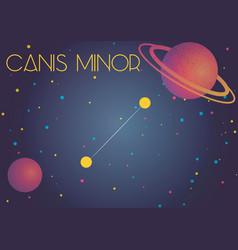 Constellation canis minor vector
