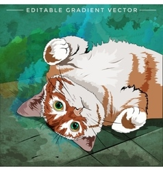 House Cat vector