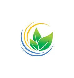 Organic green leaf botany logo vector