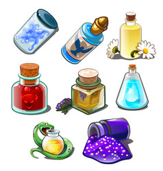set bottles with liquids flowers and snake vector image