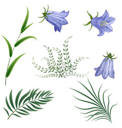 set different leaves on a white background vector image