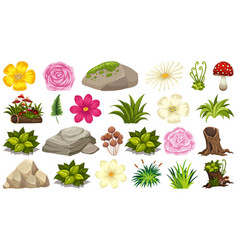 set isolated objects theme - flowers and rocks vector image