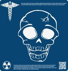 Skull X ray 15 vector