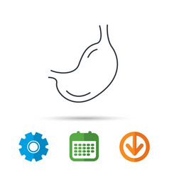 stomach icon gastroscopy health sign vector image