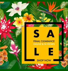 summer sale tropical banner promotion discount vector image