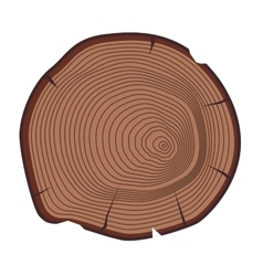 Tree slices isolated vector image vector image