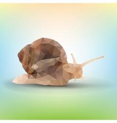 triangle garden snail vector image