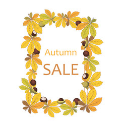 background autumn sale with chestnut leaves vector image