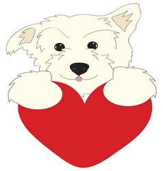 Dog heart vector