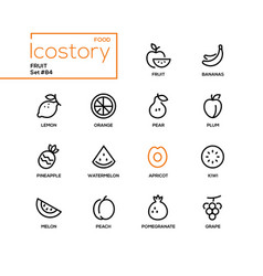 fruit - modern line design style icons set vector image