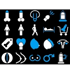 Sexual adult bicolor icons vector image