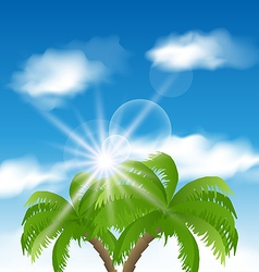 Summer background with sunlight and palmtree vector