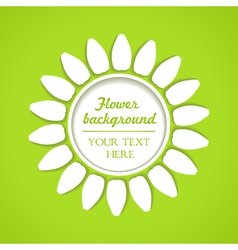 white flower as background vector image vector image