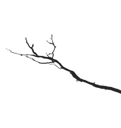Dead branches vector image vector image
