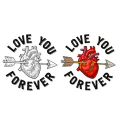 arrow pierced the heart love you forever vector image