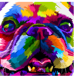 close up of french bulldog vector image
