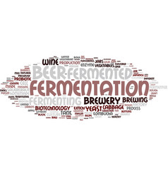 fermenting word cloud concept vector image