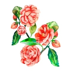 Flowers decorative realistic flower vector