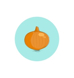 Icon onion vector