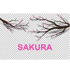 Paper art of sakura tree traditional vector