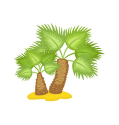 tropical or african palm tree on sand flat cartoon vector image