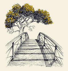 wooden bridge arch blooming tree vector image