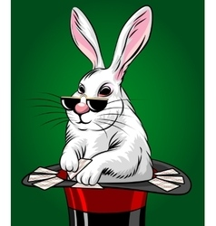 Rabbit with Cards vector image