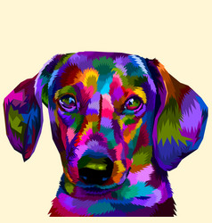 colorful daschund on pop art vector image