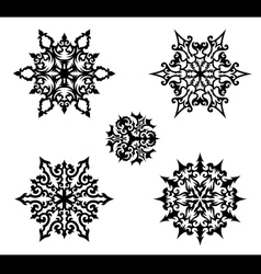 Decorative snowflakes vector image