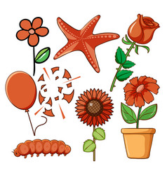Set flowers and other things in red vector