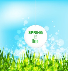 Spring is here vector