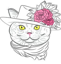 funny British cat lady vector image
