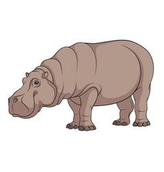 Color a hippopotamus vector