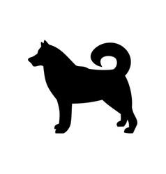 Dog icondog breed husky vector