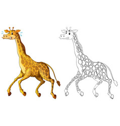 Doodle animal for giraffe running vector