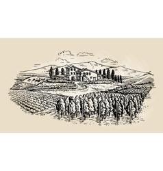 Farm sketch rural landscape with vineyard vector