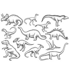Set isolated dinosaur sketches dino sketching vector