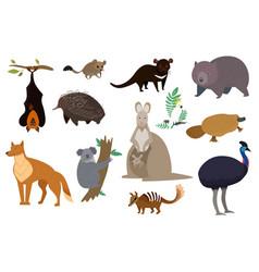 Australian animals set isolated cartoon vector