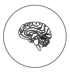 brain black icon outline in circle image vector image