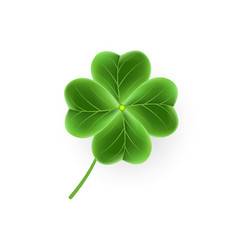 realistic clover leaf icon for st patricks day vector image