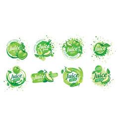 Set logos splashing green apple juice vector
